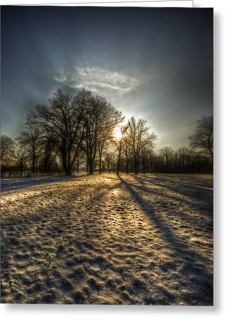 Snowstorm Digital Art Greeting Cards - Sunset snow trees Greeting Card by Nathan Wright