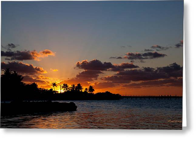Michelle Greeting Cards - Sunset Song Greeting Card by Michelle Wiarda