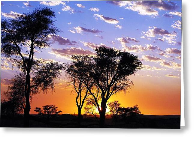 Urban Images Greeting Cards - Sunset splendour Greeting Card by Liudmila Di