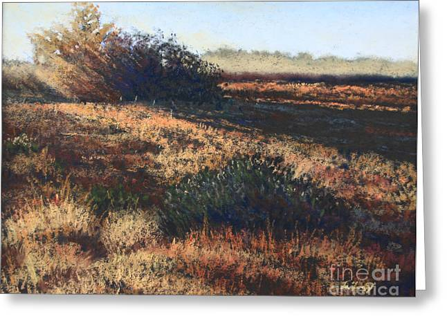 Fog Pastels Greeting Cards - Sunset Study Greeting Card by Deb LaFogg-Docherty