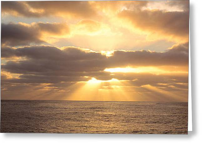 Radiates Greeting Cards - Sunset Sub Antarctic Australia Greeting Card by Panoramic Images