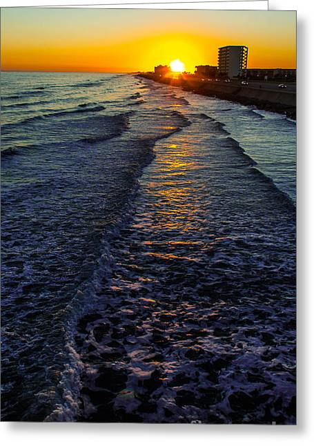 California Beach Art Greeting Cards - Sunset Surf Greeting Card by Perry Webster