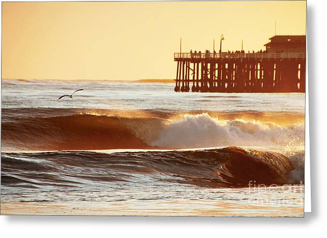 Sunset Surf Santa Cruz Greeting Card by Paul Topp