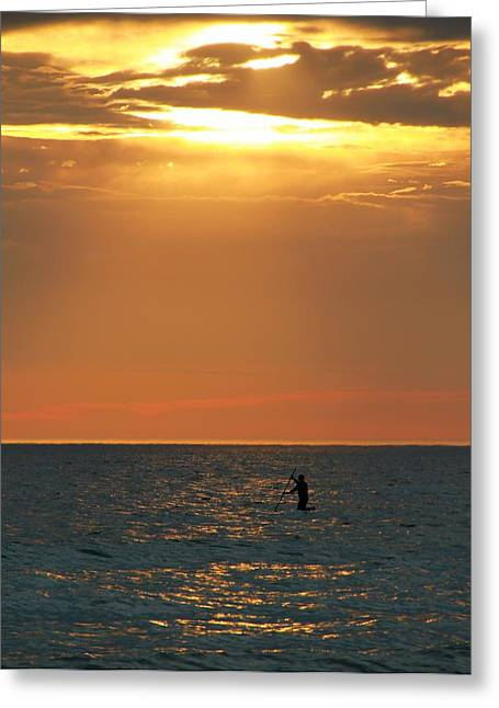 Surf Silhouette Greeting Cards - Sunset Surfer Greeting Card by Dan Sproul