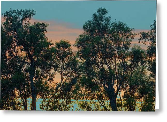 Modern Digital Art Digital Art Greeting Cards - Sunset Trees Greeting Card by Ben and Raisa Gertsberg