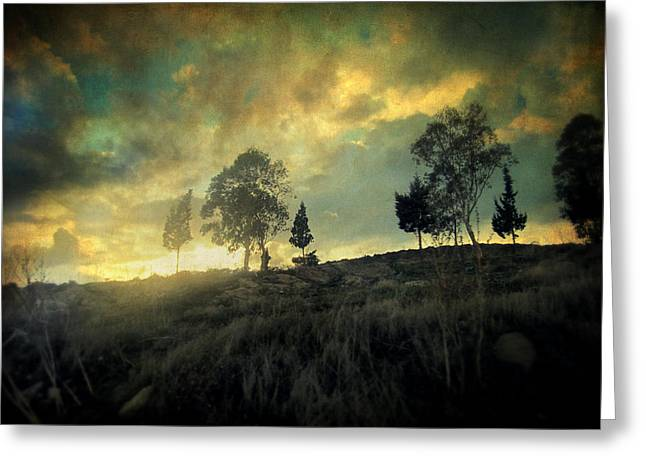 Sunset Posters Greeting Cards - Sunset Trip II Greeting Card by Taylan Soyturk