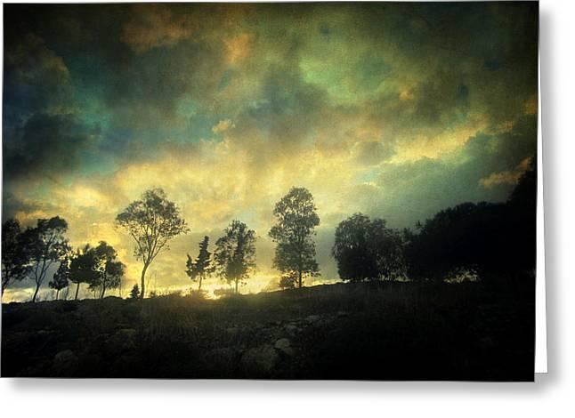 Renoir Photographs Greeting Cards - Sunset Trip Greeting Card by Taylan Soyturk