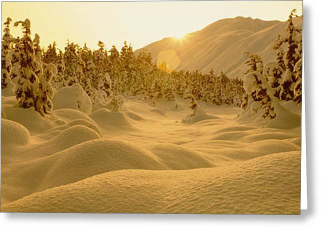 Snow Drifts Greeting Cards - Sunset, Turnagain Pass, Alaska, Usa Greeting Card by Panoramic Images
