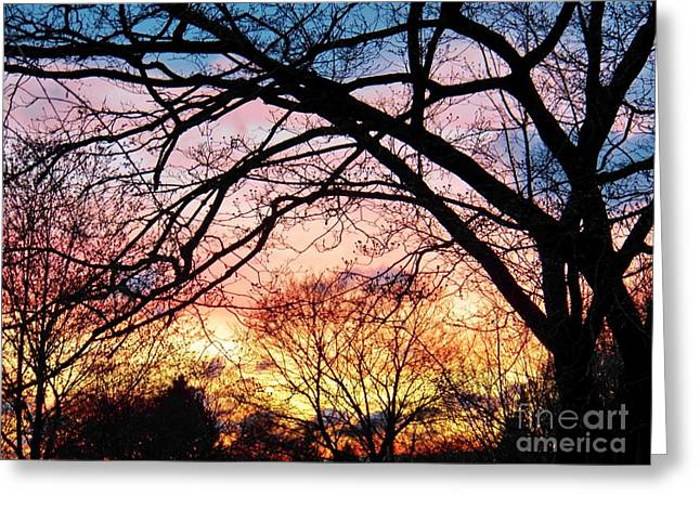 Judy Via-wolff Greeting Cards - Sunset Under the Dogwoods Greeting Card by Judy Via-Wolff