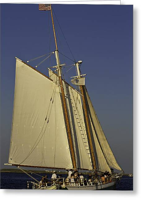 Boston Ma Greeting Cards - Sunset windjammer cruise Greeting Card by David Freuthal