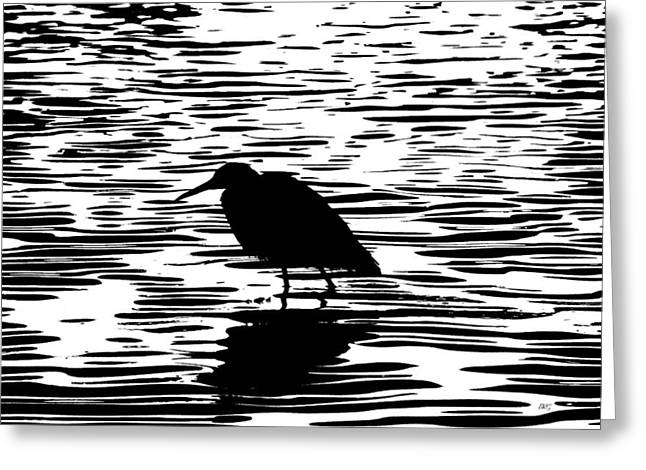 Snowy Night Greeting Cards - Sunset With A Wading Bird Silhouette Greeting Card by Ben and Raisa Gertsberg
