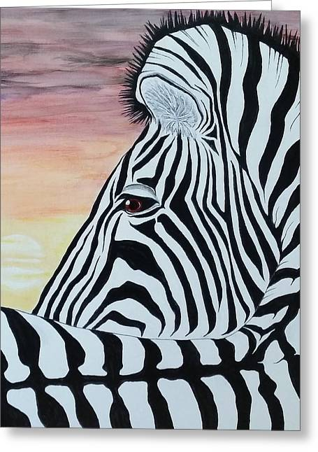 Steven White Greeting Cards - Sunset Zebra Greeting Card by Steven White