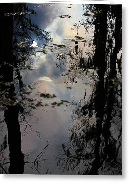 Reflections Of Sun In Water Greeting Cards - Sunshadow Greeting Card by Rdr Creative