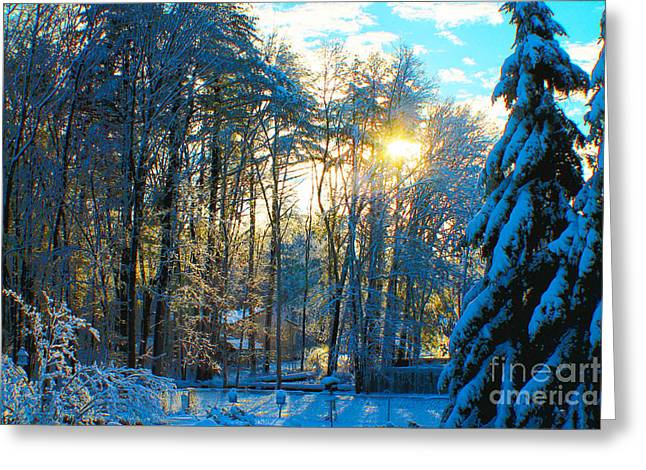 Snowy Evening Greeting Cards - Sunshine Greeting Card by Claudia Mottram