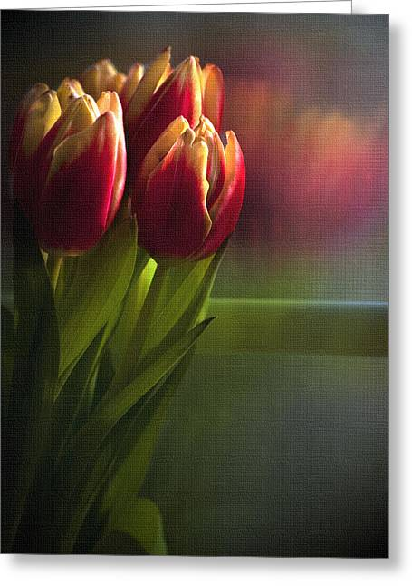 Cindy Rubin Greeting Cards - Sunshine on my window Greeting Card by Cindy Rubin