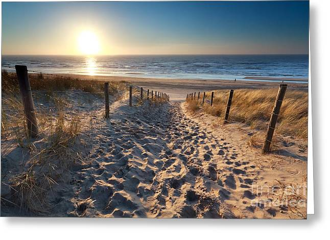 North Sea Greeting Cards - sunshine over path to beach in North sea Greeting Card by Olha Rohulya