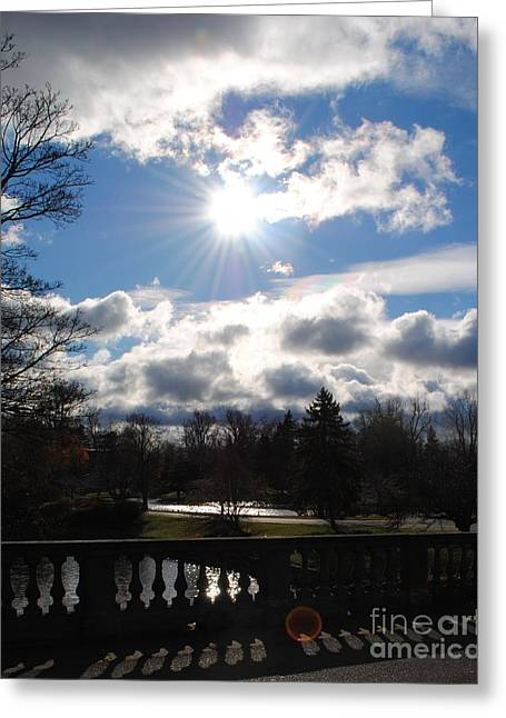 Esem8chart.com Greeting Cards - Sunshine Greeting Card by Sarah Holenstein