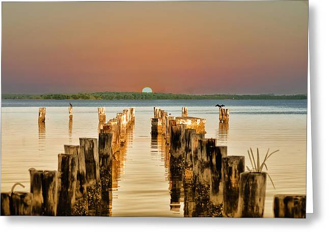 Pier Pilings Greeting Cards - Sunshine State Sunset Greeting Card by Bill Cannon