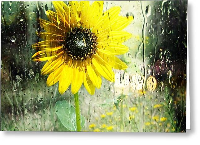 Frizzell Greeting Cards - Sunshine through the Rain Greeting Card by Michelle Frizzell-Thompson