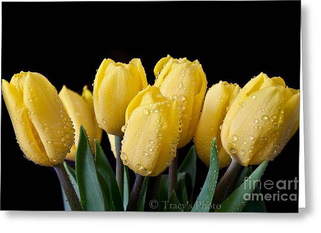 Sunshine Tulips Greeting Card by Tracy  Hall