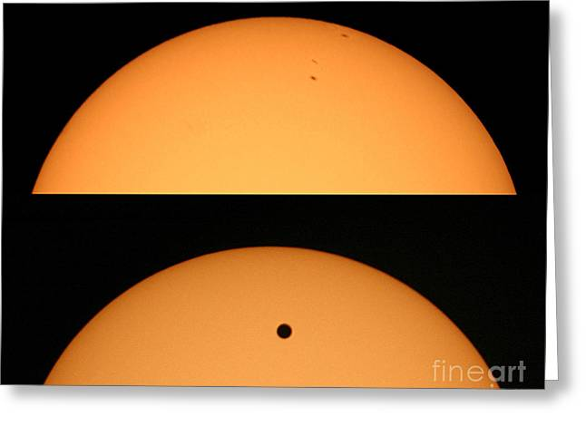 Venus Transit Greeting Cards - Sunspots And Venus Transit Comparison Greeting Card by Babak Tafreshi