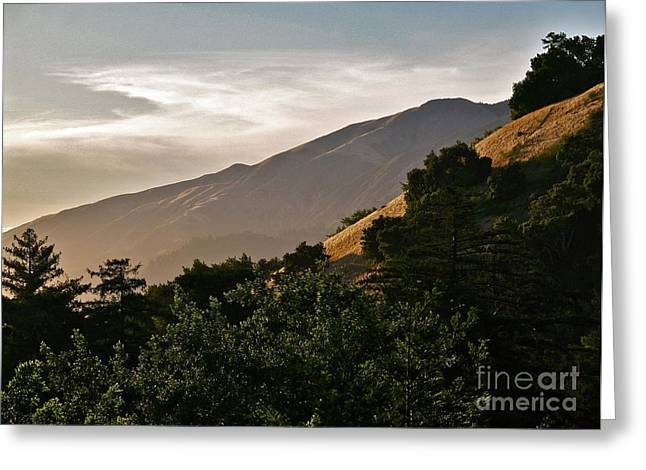 Vista Of Big Sur Greeting Cards - Sunswept  Greeting Card by Maureen J Haldeman
