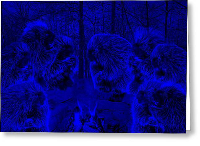 Super Blue Picky Eaters In The Moonlight Greeting Card by LeeAnn McLaneGoetz McLaneGoetzStudioLLCcom