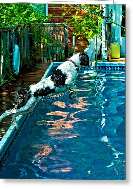 Diving Dog Greeting Cards - Super Dog Greeting Card by Steve Harrington