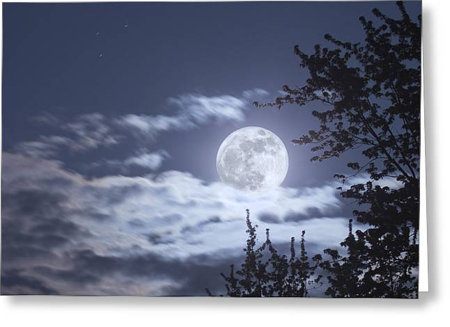 Man In The Moon Greeting Cards - Super Moon Greeting Card by Barbara Eckstein