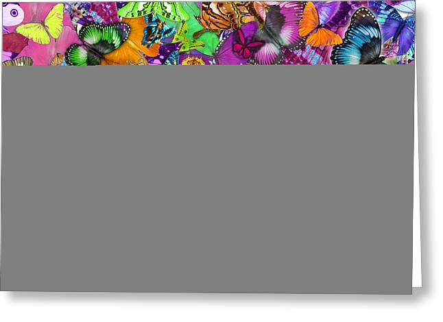 Euphoria Greeting Cards - Super Rainbow Butterflies Greeting Card by Alixandra Mullins