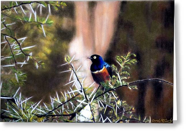 Office Pastels Greeting Cards - Superb Starling Greeting Card by Carol McCarty