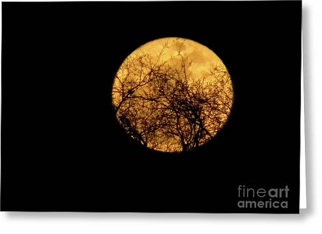 SuperMoon 2 Greeting Card by Laura Yamada
