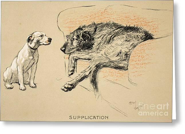 Hound Drawings Greeting Cards - Supplication Greeting Card by Cecil Charles Windsor Aldin