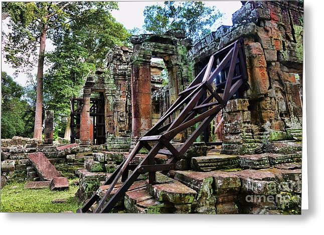 Tree Roots Greeting Cards - Support Ta Prohm Greeting Card by Chuck Kuhn