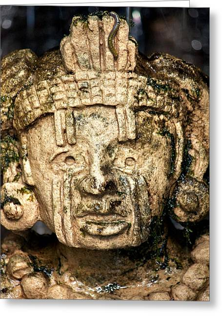 Mayan Pottery Greeting Cards - Surprised Greeting Card by Andrew Chianese