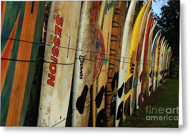 Wind Surfer Greeting Cards - Surboard Fence 3 Greeting Card by Bob Christopher