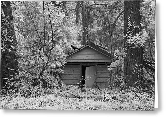 Surreal Infrared Photos By Kathy Fornal. Infrared Greeting Cards - Sureal Gothic Infrared Woodlands Haunting Spooky Eerie Old Building With Black Ravens Greeting Card by Kathy Fornal