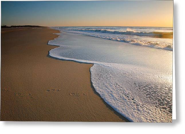 Virginia Beach Greeting Cards - Surf And Sand Greeting Card by Steven Ainsworth