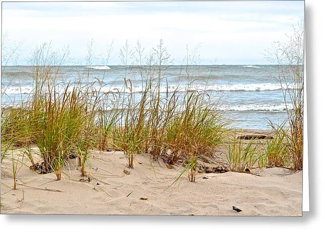 Lapping Greeting Cards - Surf and Turf Greeting Card by Frozen in Time Fine Art Photography
