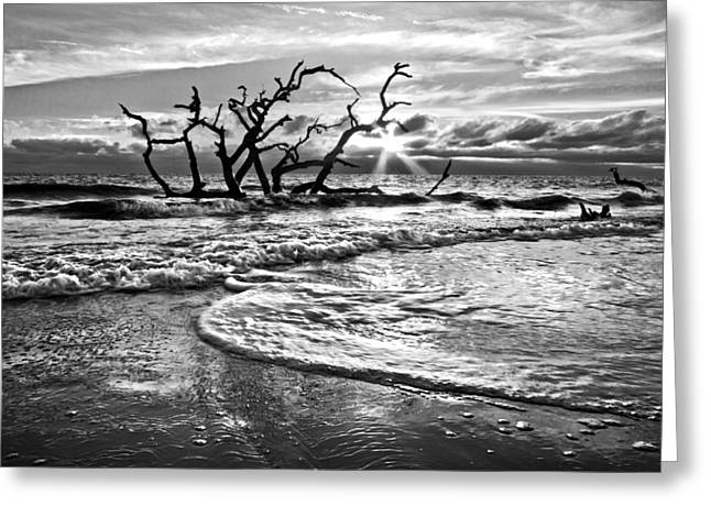 Surfing Art Greeting Cards - Surf at Driftwood Beach Greeting Card by Debra and Dave Vanderlaan