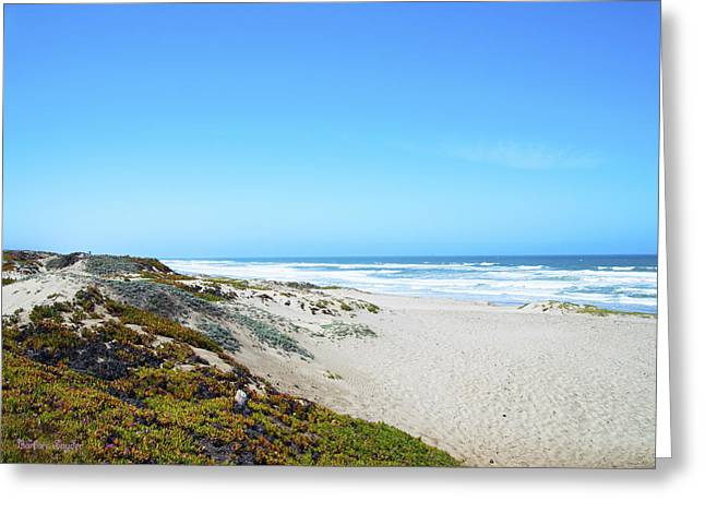 Beach Photos Digital Greeting Cards - Surf Beach Lompoc California Greeting Card by Barbara Snyder