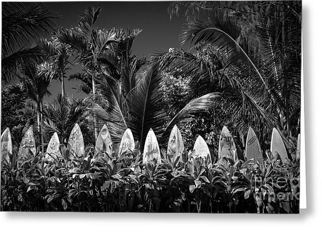 Board Fence Greeting Cards - Surf Board Fence Maui Hawaii Black and White Greeting Card by Edward Fielding