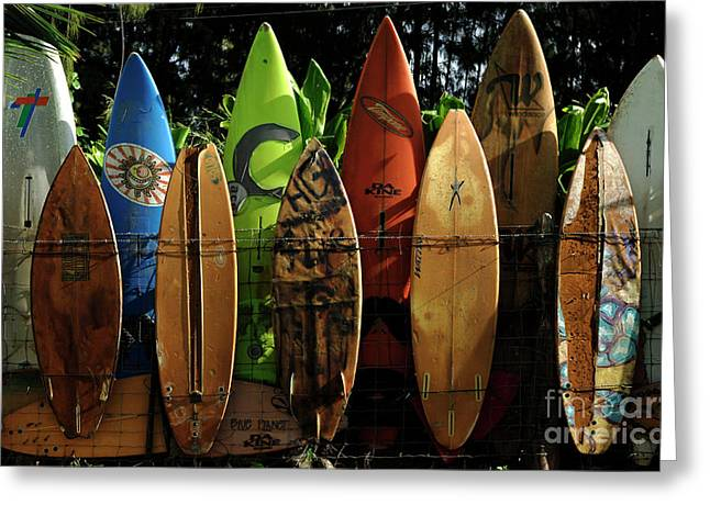 Surfer Greeting Cards - Surfboard Fence 4 Greeting Card by Bob Christopher
