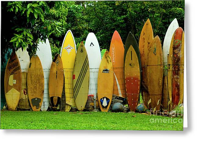 Board Fence Greeting Cards - Surfboard Fence Maui Greeting Card by Bob Christopher