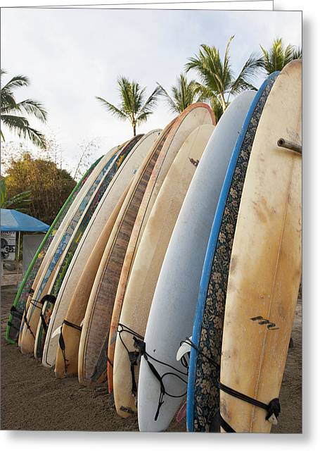 Rack Greeting Cards - Surfboards Standing Up Against A Rack Greeting Card by Keith Levit