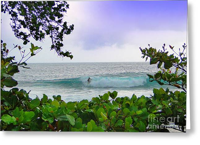 Al Central Greeting Cards - Surfer Dude In Bocas Del Toro - Panama Greeting Card by Al Bourassa