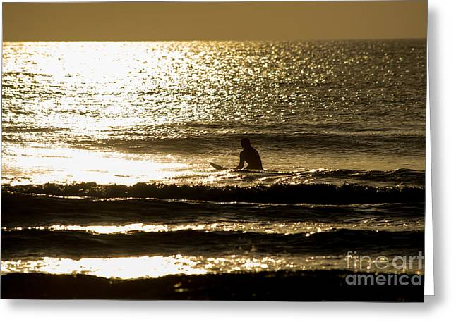 Surf Silhouette Pyrography Greeting Cards - Surfer silhouette golden sunrise Greeting Card by Michael Bennett