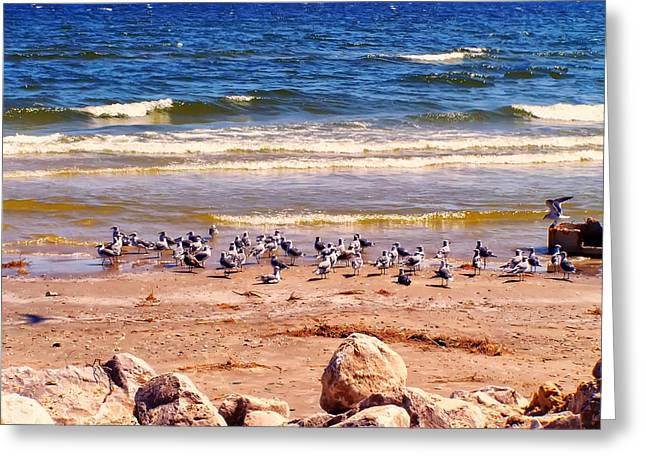 Beach Photos Digital Greeting Cards - Surfside beach Texas Greeting Card by Chris Flees