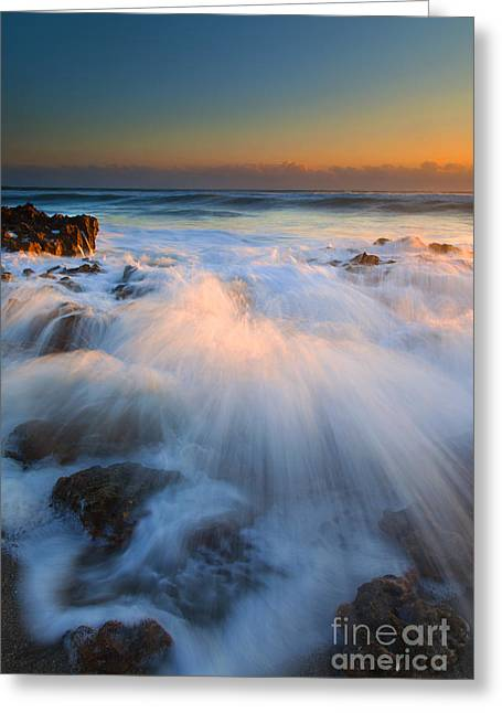 Coral Greeting Cards - Surge Greeting Card by Mike  Dawson