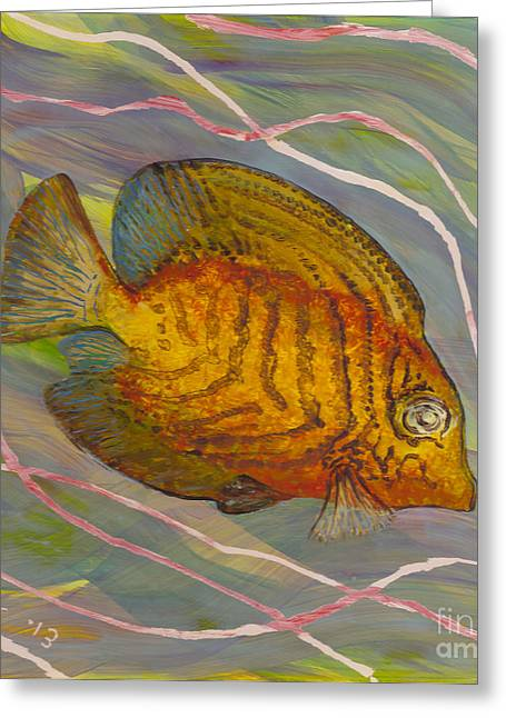 Under The Ocean Glass Art Greeting Cards - Surgeonfish Greeting Card by Anna Skaradzinska